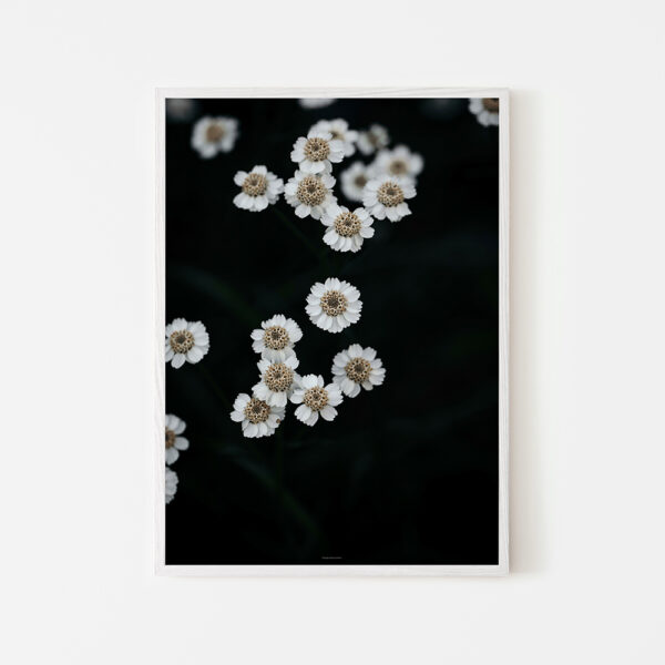 Kukkajuliste 50x70